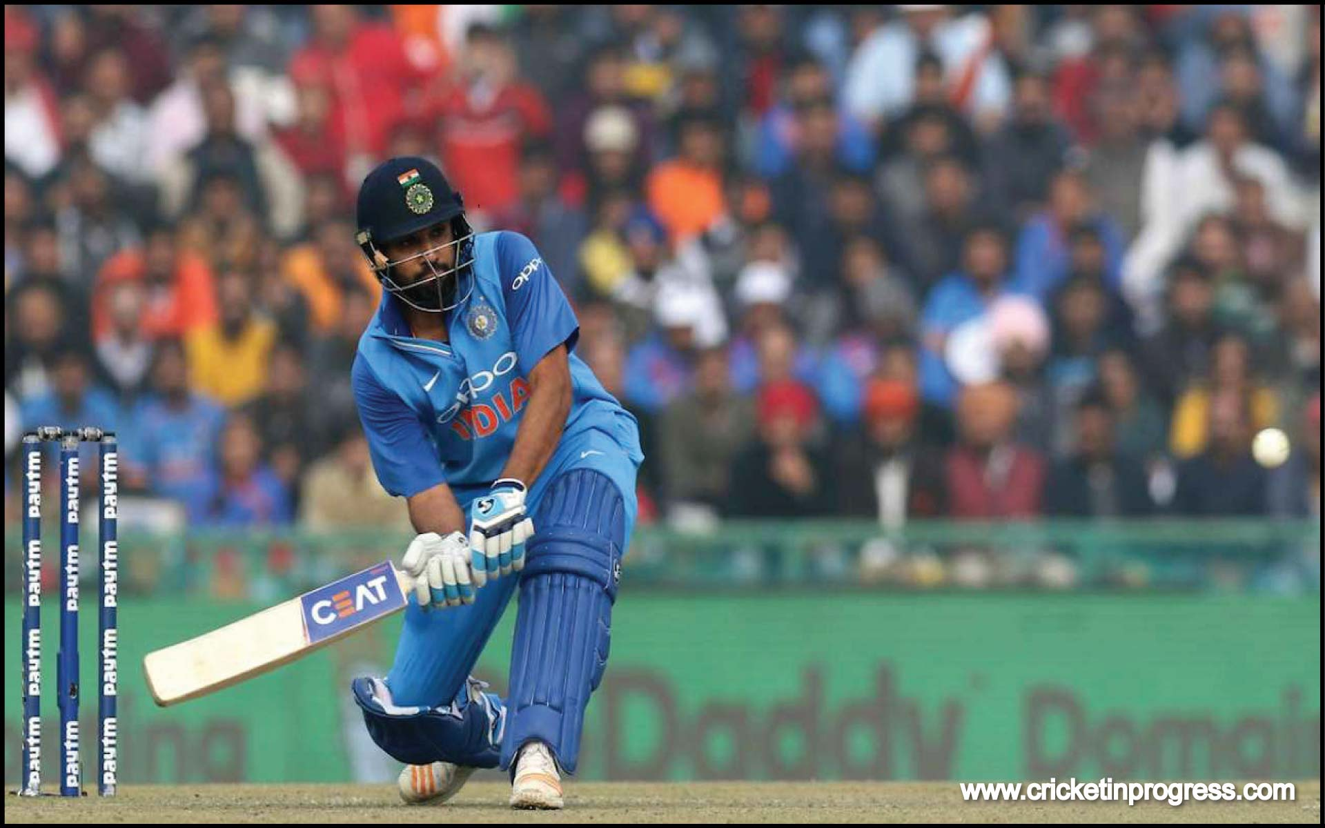 Rohit Sharma, you beauty!