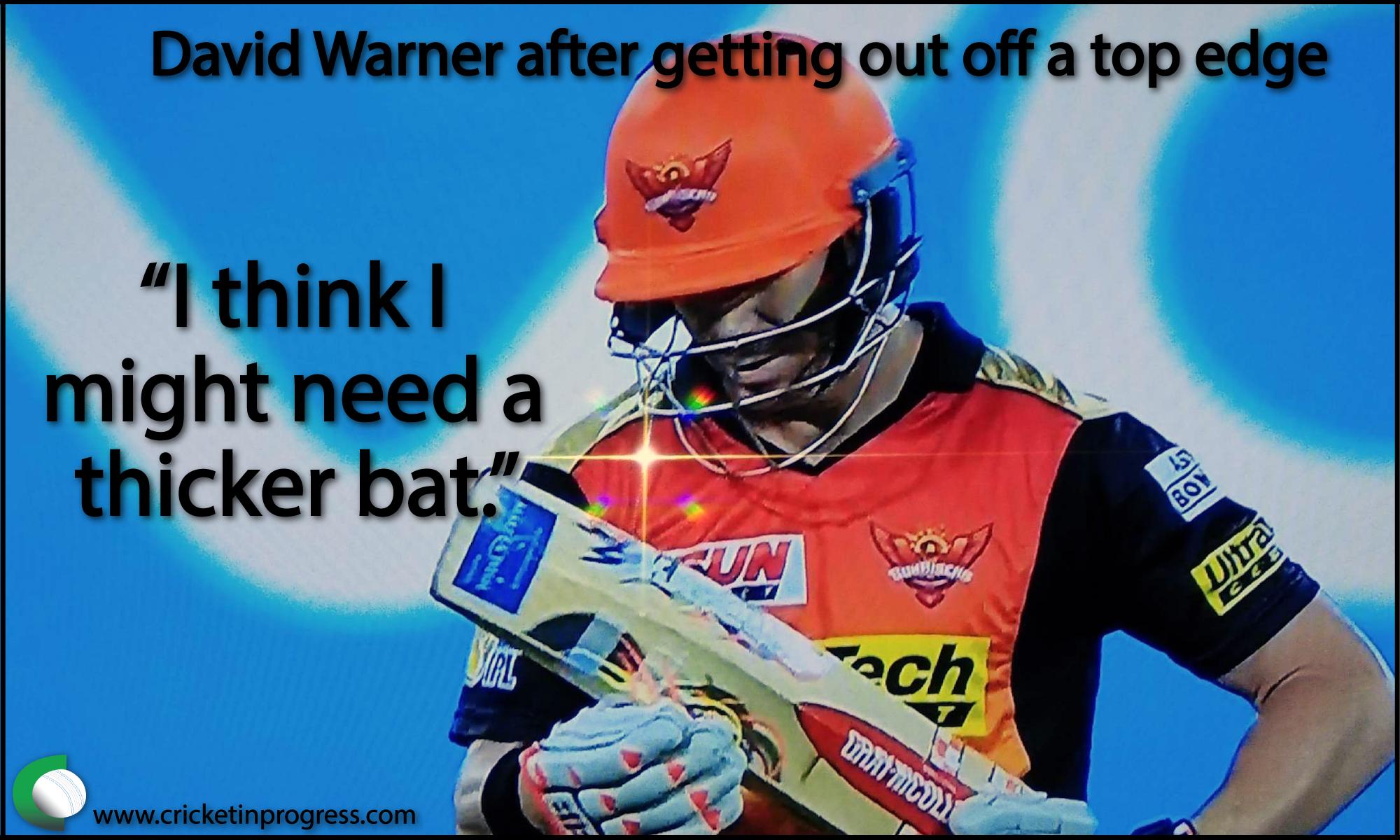 David Warner thick bat